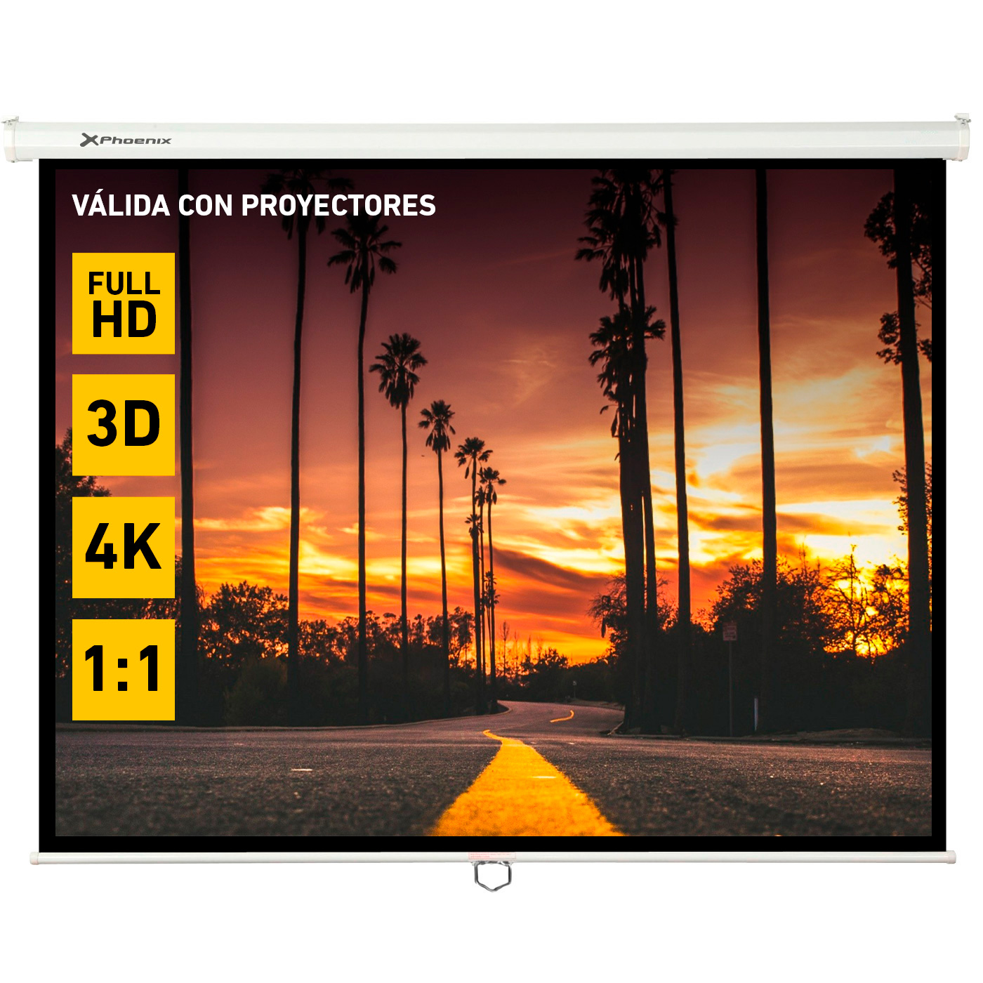 Pantalla Manual Videoproyector Phoenix 169?? 3m X 3m PHPANTALLA-300M