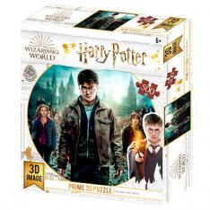 PUZZLE 3D LENTICULAR HARRY POTTER HARRY HERMIONE Y RON 500 PIEZAS